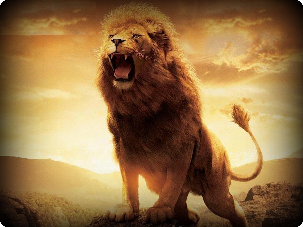 Roaring-Lions-Wallpaper-03